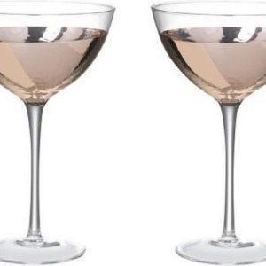 set-van-2-martine-cocktail-glas-rose-goud-koper-170cl