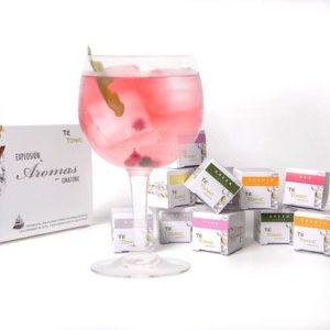 te-tonic-experience-minipack-24-infusions-met-6-verschillende-smaken